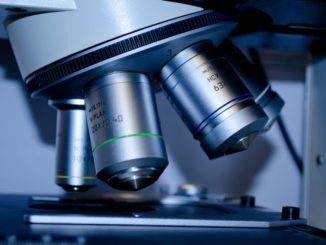 Μεταπτυχιακό Πρωτεϊνική Βιοτεχνολογία Πανεπιστήμιο Κρήτης